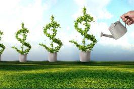 Đầu tư dài hạn là gì