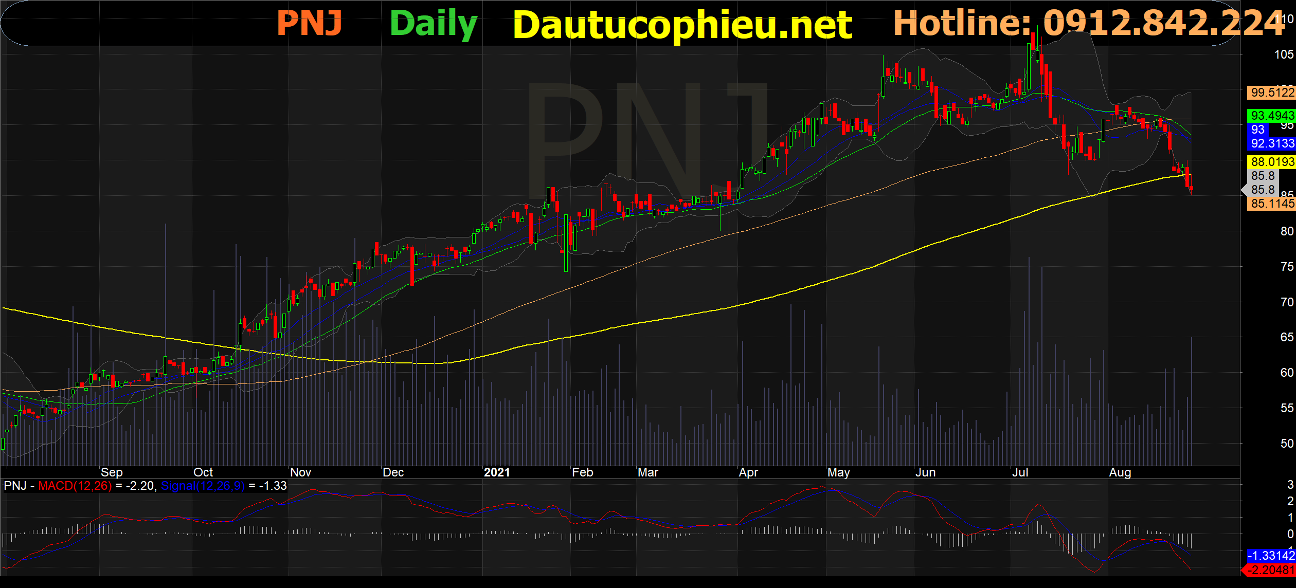 Cập nhật cổ phiếu PNJ – Khó khăn trong ngắn hạn triển vọng dài hạn tươi sáng